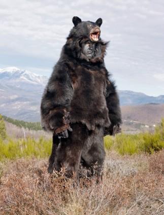 07-france-festival-of-bears-670