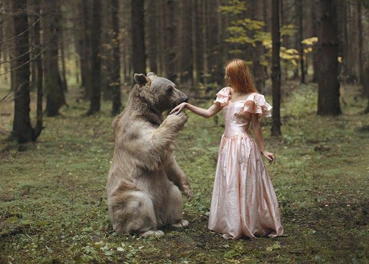 El oso en la Edad Media: Historia de un guerrerootoñal