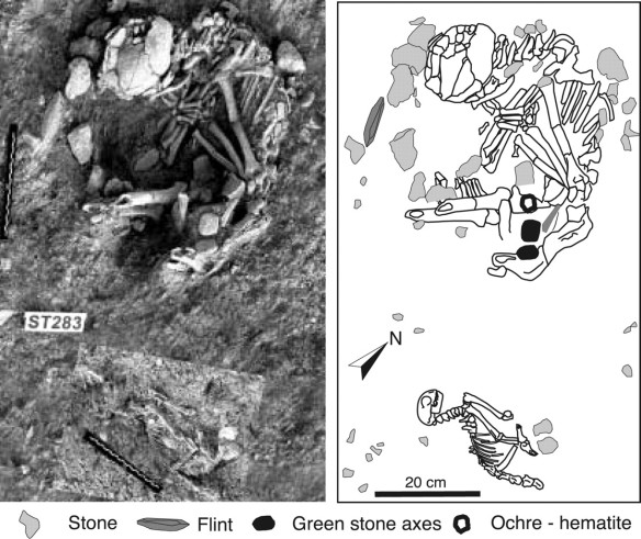 Tumba neolítica de gato y humano (Shillourokambos, Chipre)
